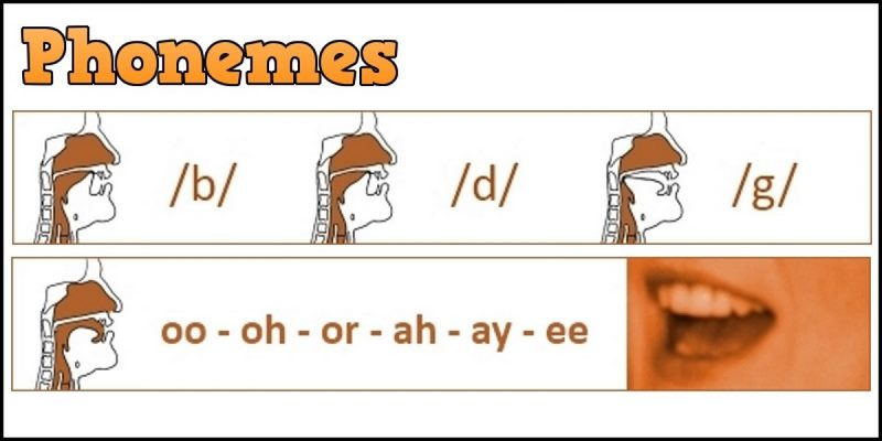 تمرین/ تلفظ صحیح حروف